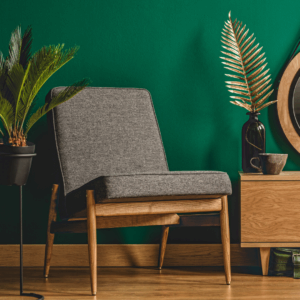 jungle green wall paint in living space